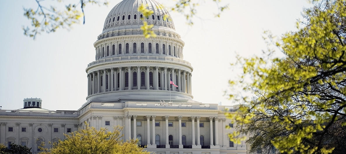 The-Capitol-Hill-Challenge-How-Would-a-Teenager-Invest-$100,000