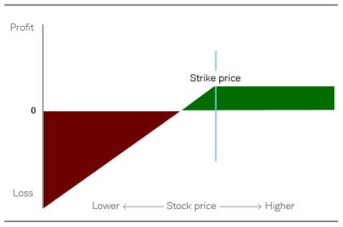 Chart depicts that while the profit is limited to the premium received at the time the option is sold, the downside risk increases the closer the stock gets to zero.