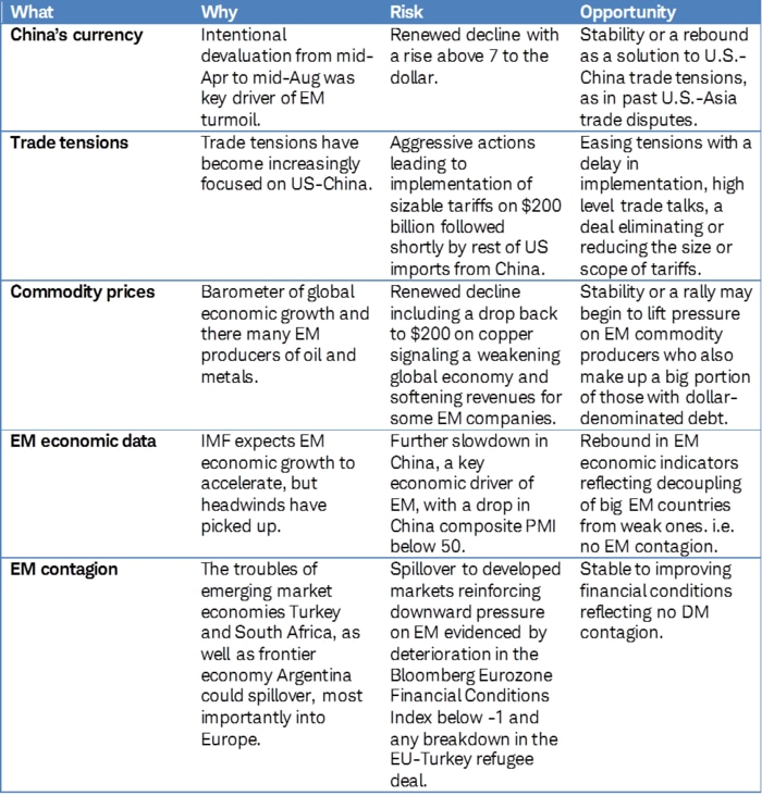 key drivers specific to emerging markets
